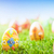 colorful hand painted easter eggs in grass spring theme stock photo © photocreo