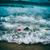 волны · стиральные · далеко · красную · розу · пляж · Vintage - Сток-фото © photocreo