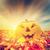 Хэллоуин · фонарь · электрических · гирлянда · продовольствие · улыбка - Сток-фото © photocreo