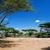 サバンナ · 風景 · アフリカ · セレンゲティ · タンザニア · 木 - ストックフォト © photocreo