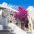 Grieks · huis · traditioneel · bloemen · home · planten - stockfoto © photocreo