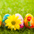 kolorowy · strony · malowany · Easter · Eggs · trawy · wiosną - zdjęcia stock © photocreo