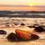 amber stone on the beach precious gem treasure baltic sea stock photo © photocreo