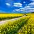 землю · нефть · области · пейзаж · технологий - Сток-фото © photocreo