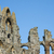 close up of the whitby abbey gothic ruins stock photo © photohome