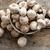 fresco · botão · cogumelos · praça · tigela - foto stock © photohome