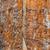 öreg · rozsdás · tányér · ipari · minta · szög - stock fotó © photooiasson