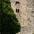 Сицилия · мнение · древних · дороги · тумана · город - Сток-фото © photooiasson