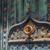 ív · fából · készült · mediterrán · ajtó · ház · textúra - stock fotó © photooiasson
