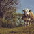 marrom · vaca · paisagem · curioso · verão · céu - foto stock © photosebia