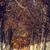 осень · пейзаж · аллеи · покрытый · высушите · коричневый - Сток-фото © photosebia