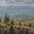 peaceful panoramic mountain landscape stock photo © photosebia
