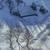 rural · celeiro · inverno · pequeno · Colorado · coberto - foto stock © photosebia