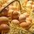 fresco · ovos · palha · raso · foco - foto stock © photosil