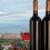 Barcelona · wijn · druiven · middellandse · zee · zee · stad - stockfoto © photosil