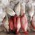 poissons · fruits · de · mer · glace · maquereau · nature · mer - photo stock © photosoup