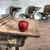 elhagyatott · iskola · ház · piros · alma · egy · szoba - stock fotó © pictureguy