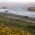 kuru · ot · yığını · kaya · top · plaj · gün · batımı · iğneler - stok fotoğraf © pictureguy