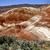 painted hills oregon stock photo © pictureguy