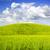 yaz · manzara · görmek · çayır · Avrupa · Polonya - stok fotoğraf © Pietus