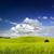 yaz · manzara · görmek · Avrupa · Polonya - stok fotoğraf © Pietus