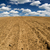 Ploughed field. stock photo © Pietus
