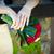menyasszony · tart · virágcsokor · rózsák · esküvő - stock fotó © pixachi