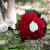 menyasszonyi · cipők · fehér · vörös · szőnyeg · divat · terv - stock fotó © pixachi