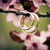 Wedding rings closeup with pink cherry flowers stock photo © pixachi