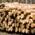 グループ · 松 · 空 · テクスチャ · 木材 · 風景 - ストックフォト © pixelman