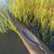 arco · corrida · caiaque · esbelto · fibra · de · carbono · construção - foto stock © pixelsaway