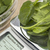 fresh spinach on diet scale stock photo © pixelsaway