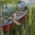 corgi dog in a canoe stock photo © pixelsaway