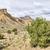 desert landscape of book cliffs in eastern utah stock photo © pixelsaway