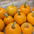 pumpkins on a rustic wood stock photo © pixelsaway