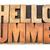 hello summer   word abstract in wood type stock photo © pixelsaway