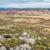 Colorado · egyenetlen · terep · sziklák · kanyon · piros - stock fotó © pixelsaway