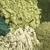 egészséges · zöld · diétás · kiegészítők · köteg · öt - stock fotó © pixelsaway