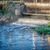 processed and cleaned sewage outflow stock photo © pixelsaway