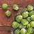 metaal · mand · tabel · Rood · vruchten · witte - stockfoto © pixelsaway