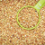 measuring cup of buckwheat stock photo © pixelsaway