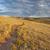 trail through colorado prairie stock photo © pixelsaway