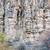 kumtaşı · uçurum · sütunlar · Colorado · doku · duvar - stok fotoğraf © pixelsaway