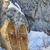 Vintage · несут · лапа · тень · снега · кожа - Сток-фото © pixelsaway