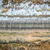 railroad tracks aerial view stock photo © pixelsaway