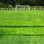 erboso · campo · obiettivo · post · superficie - foto d'archivio © pixinoo