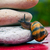 snail crossing a rock barrier stock photo © pixinoo