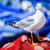 gabbiano · alimentare · becco · luce · mare · bellezza - foto d'archivio © pixinoo