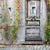 лестницы · двери · каменной · стеной · старые · текстуры - Сток-фото © pixxart