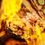 chama · camarão · frango · comida · restaurante · jantar - foto stock © pngstudio